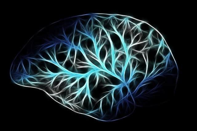 s'entraîner pour créer des autoroutes neuronales